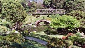 arbeta i trädgården japan arkivfoto