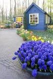 arbeta i trädgården keukenhof Arkivbilder