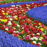 arbeta i trädgården keukenhof Royaltyfri Foto