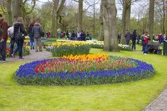 arbeta i trädgården keukenhof Royaltyfria Bilder