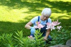 arbeta i trädgården kvinna fotografering för bildbyråer