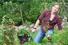 arbeta i trädgården kvinna Arkivbild