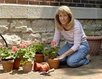 arbeta i trädgården kvinna Arkivbilder