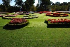 arbeta i trädgården lawn mejad schonbrunn royaltyfria bilder