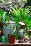 arbeta i trädgården livstid fortfarande royaltyfri bild