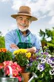 arbeta i trädgården manpensionär Arkivfoto