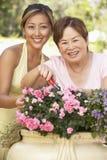 arbeta i trädgården moder för vuxen dotter tillsammans royaltyfria bilder