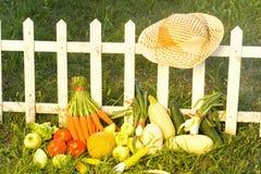 Arbeta i trädgården-nya grönsaker för grönsak Royaltyfri Bild