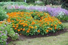 Arbeta i trädgården och landskap Fotografering för Bildbyråer