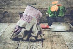 Arbeta i trädgården plats med handskar och blommaInstagram stil filtrera Royaltyfri Fotografi