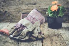 Arbeta i trädgården plats med handskar och blommaInstgram stil filtrera Royaltyfria Bilder