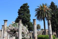 arbeta i trädgården pompeii Fotografering för Bildbyråer