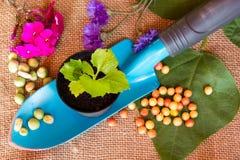 Arbeta i trädgården skopan på säckvävbakgrund Fotografering för Bildbyråer