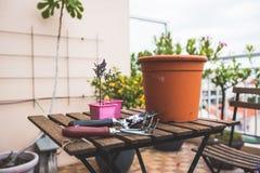 arbeta i trädgården som är stads- Arkivfoton