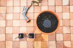 arbeta i trädgården som är stads- Arkivfoto