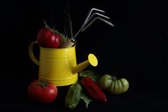 Arbeta i trädgården stilleben med grönsaker Arkivbild
