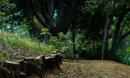 arbeta i trädgården trailen Royaltyfri Fotografi