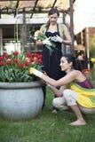 arbeta i trädgården två kvinnor Royaltyfri Bild