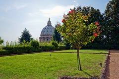 arbeta i trädgården vatican Arkivbilder