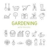 Arbeta i trädgården vektorlinjen symboler Royaltyfri Bild