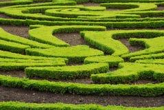 arbeta i trädgården versailles Fotografering för Bildbyråer
