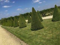 arbeta i trädgården versailles royaltyfri fotografi