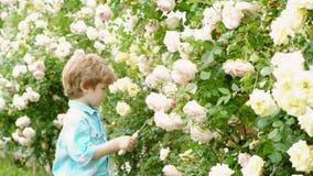 Arbeta i tr?dg?rden hobby Hobbyer och fritid lyckliga tr?dg?rdsm?stare med v?rblommor Fadern och sonen växer blommor tillsammans stock video