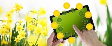 Arbeta i tr?dg?rden och blommae-kommers begrepp, online-shopping p? den digitala minnestavlan, hand som pekar och peksk?rm med gr vektor illustrationer