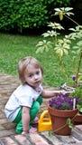 arbeta i trädgården hemligheten Royaltyfri Bild