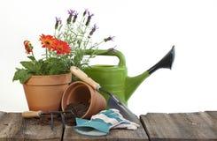 Arbeta i trädgården hjälpmedel och blommor Royaltyfria Bilder