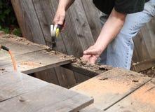 Arbeta med gamla staketbräden Royaltyfri Foto