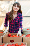 Arbeta med grönsaker Royaltyfria Foton