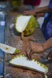 Arbeta på durianen Royaltyfria Bilder