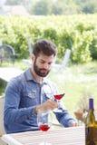 Arbeta på vingården Fotografering för Bildbyråer
