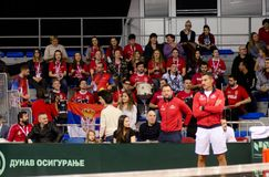Arbeta som privatlärare åt Nenad Zimonjic och serbfans i arenan, Davis Cup 2018, Nis, Serbien Royaltyfri Fotografi