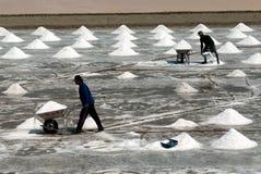 Arbetare arbetar på en salt lantgård i Thailand Fotografering för Bildbyråer