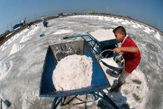 Arbetare arbetar på en salt lantgård i Thailand Arkivfoton