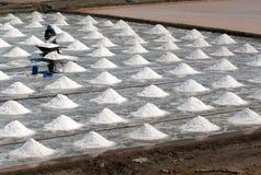 Arbetare arbetar på en salt lantgård i Thailand Arkivbild
