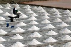 Arbetare arbetar på en salt lantgård i Thailand Royaltyfri Fotografi