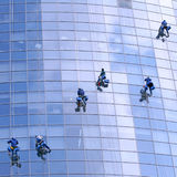 arbetare för fönster för byggnadskontor tvättande Royaltyfria Bilder