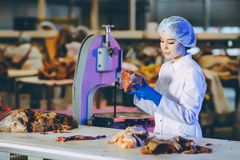 Arbetare för fabrik för produktion för rått kött arkivfoto