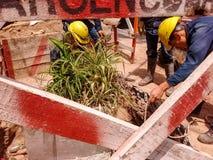 Arbetare i handling, orörd natur arkivbild