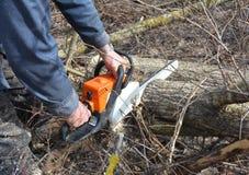 Arbetare med bensinchainsawen i Forest Tree Cutting Saw Mannen med bensinbensinkedjan såg att klippa för träd som var utomhus- arkivbilder