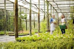Arbetare och kund i ett grönt hus royaltyfri fotografi