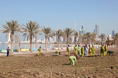 Arbetare på cornichen i Kuwait Royaltyfri Foto