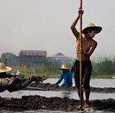 Arbetare på Inle sjön i Burman ( Myanmar) Royaltyfri Foto