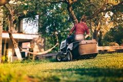 Arbetare som använder den yrkesmässiga gräsklipparen för att klippa trädgårdgräs Pågående Lansdscaping arbeten Arkivbilder