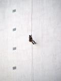 Arbetare som hänger från rep på byggnadsväggen royaltyfria bilder