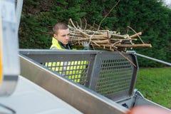 Arbetare som sätter trädfilialer in i lastbilen arkivbilder