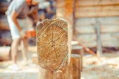 Arbetare som sågar ett chainsawträd arkivfoto